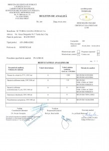 Buletin analiza DSP Bazin